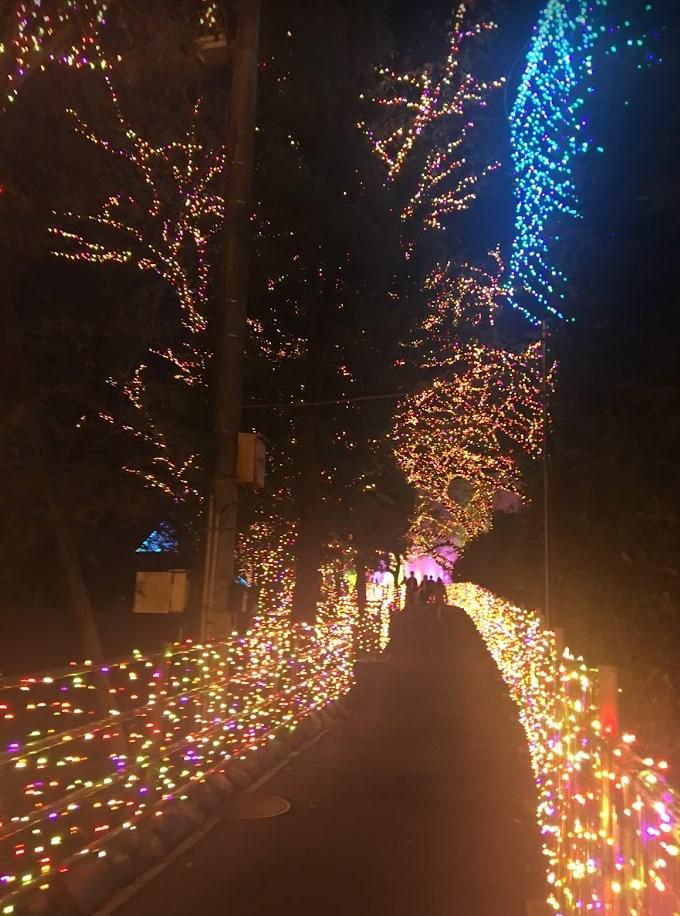 よみうりランドのイルミネーション2018年-2019年のココが凄い!期間中のイベントもご紹介!